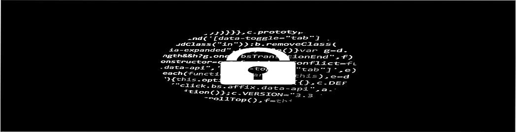 Sécurité security-Investigations sur la fraude et les risques de fraude